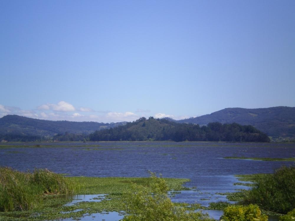 Laguna de Fúqene, Cundinamarca - Colombia. Foto: David Medina