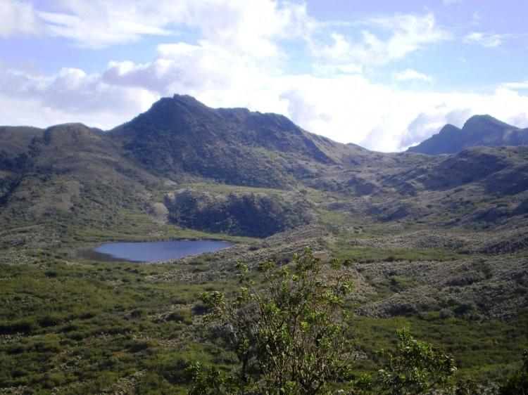 Parque Nacional Natural Chingaza - Cundinamarca. Foto David Medina