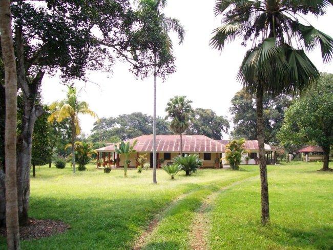 Las Unamas en San Martín – Meta, Colombia