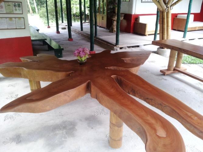 Comedor de Madera con forma de Orquidea