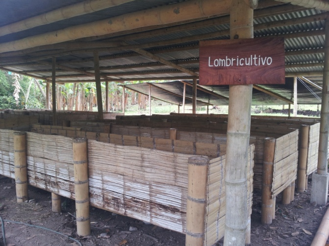 Lombricultivo