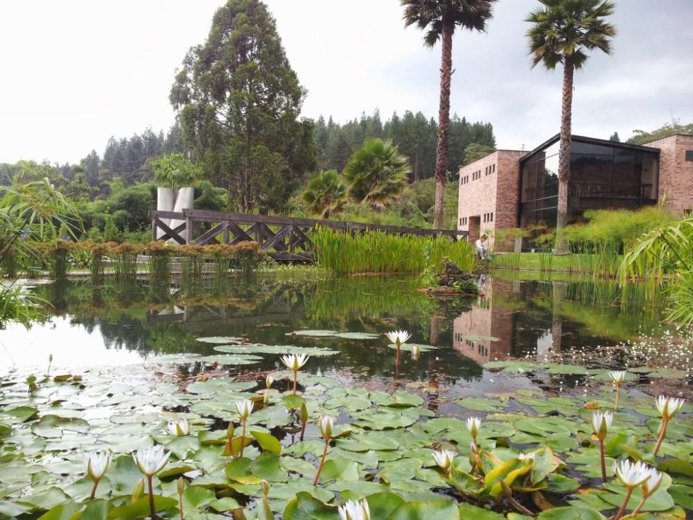 Lago en el Recinto del pensamiento. Manizales - Caldas. Foto: David Medina