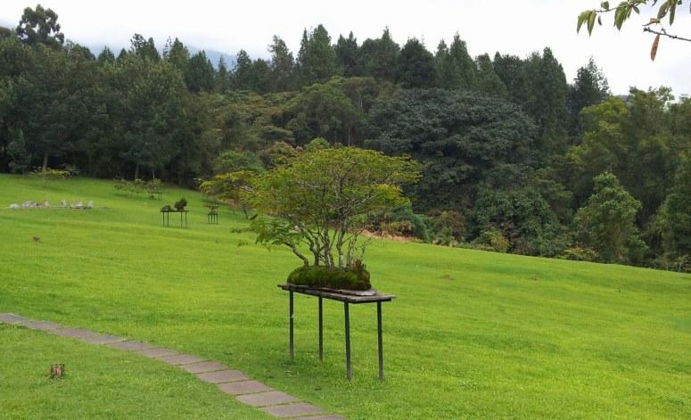 Jardín zen recinto del pensamiento. Manizales - Caldas. Foto: David Medina