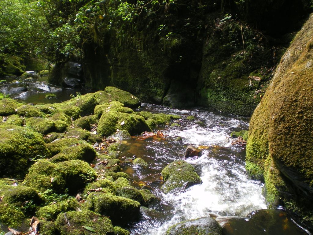 Cascada Parque San Rafael - Fusagasuga, Cundinamarca. Foto: David Medina