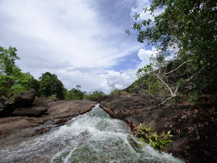 Sector Caño Lapa en el PNN EL Tuparro - Vichada. Foto: David Medina