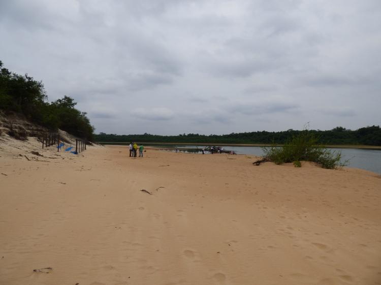 Playas en Finca la Pedregoza sobre el Río Bita - Vichada. Foto: David Medina