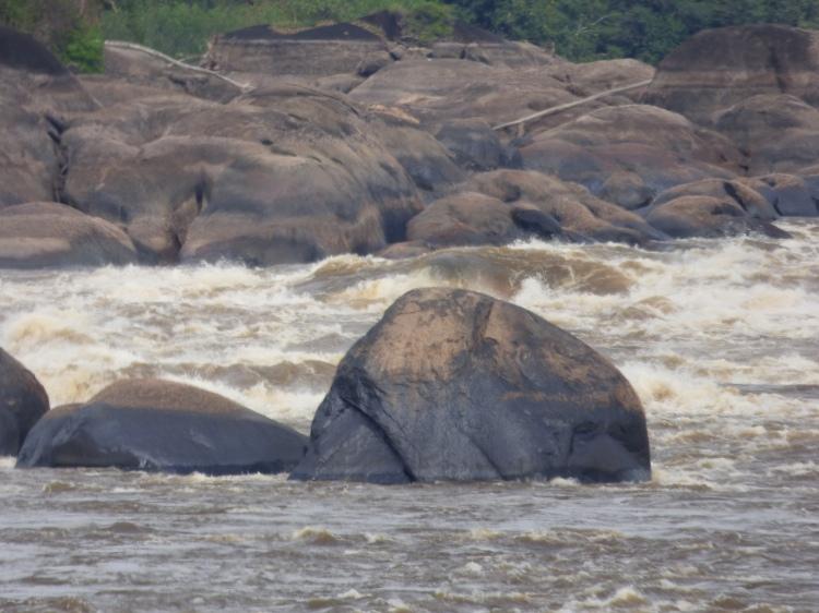 Raudal del Maipures en el Río Orinoco - PNN El Tuparro - Vichada: Foto: David Medina