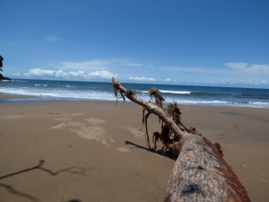 Playa de los deseos - Bahía Solano - Chocó. Foto: David Medina