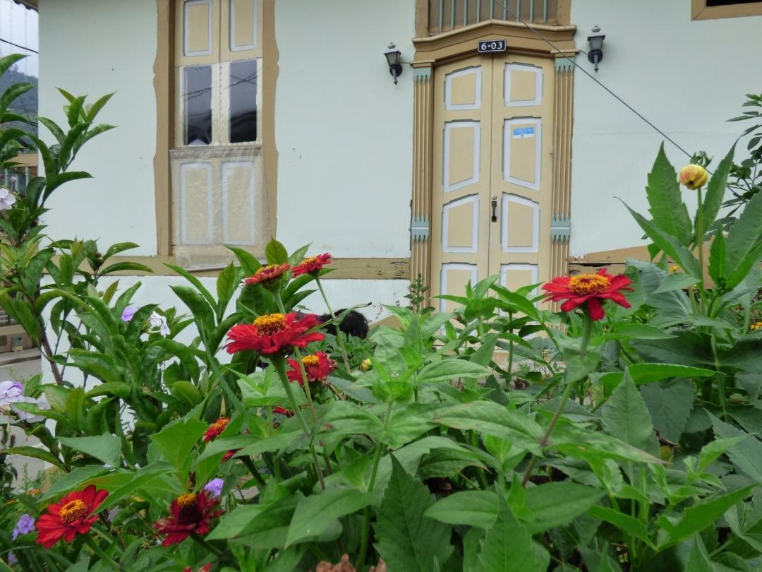 Flores y Arquitectura Pijao - Quindío. Foto: David Medina