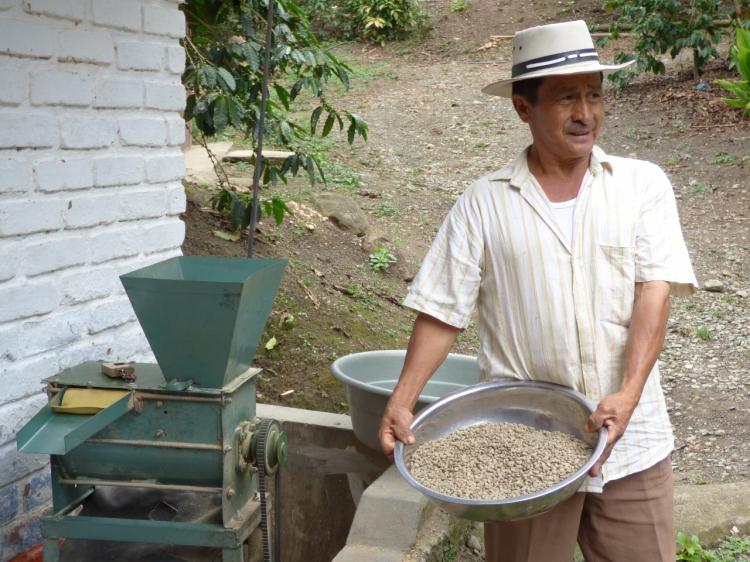 Don Leo Explicando del proceso del Café - PIjao - Quindío. Foto: David Medina