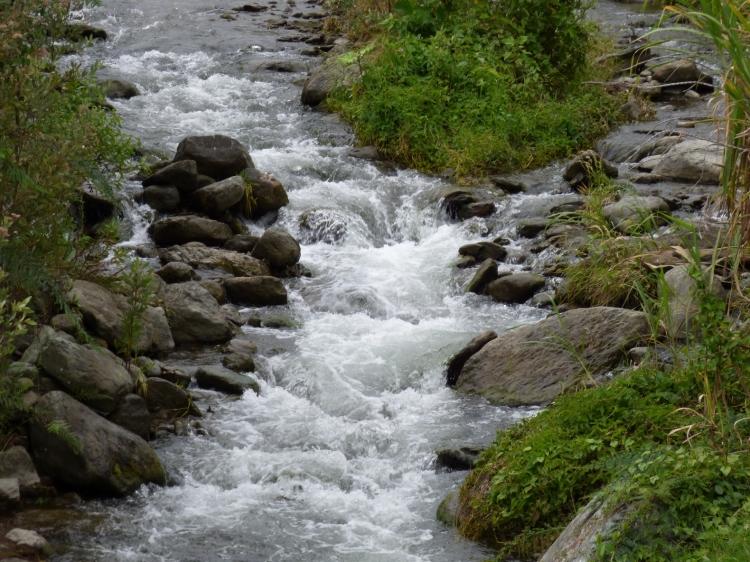 El agua y la naturaleza tambien se vive en Pijao - Quindío. Foto: David Medina