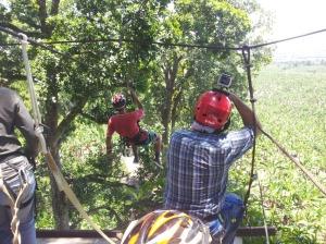 Canopy Caracolíes