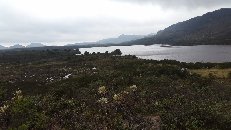 Laguna Verde ,Tausa - Cundinamarca