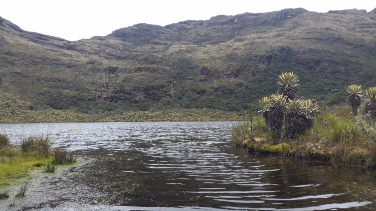 Laguna de Iguaque, santuario de Flora y Fauna Iguaque en Villa de Leyva - Boyacá - Colombia Foto: David Medina